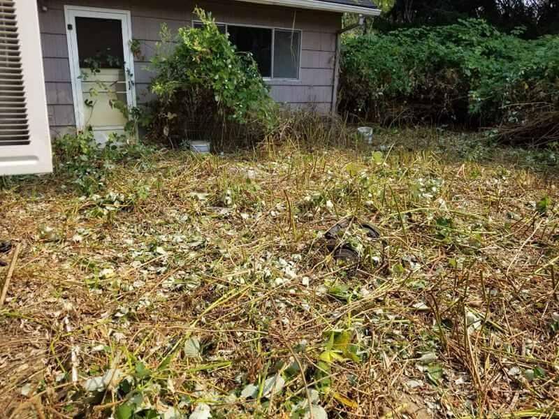 landscaping companies Portland