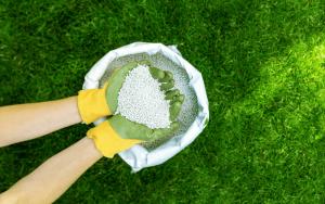 Cost For Lawn Fertilizer